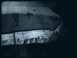 Umbrella in a Dream by myrnajacobs