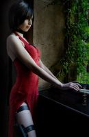 Ada Wong - Resident Evil 4 by LolitaAmane