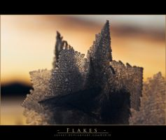 Flakes by sxy447