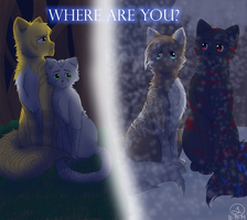 Where are you? by selene411