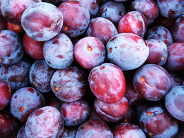 Plums by iPod23