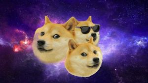 THE DOGE CLUSTER - ASTRONOMY POST ! by JohnScena