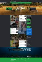 Web design - Discovery channel concept by Shizoy