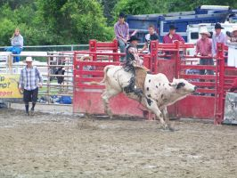 31 goshen rodeo by dragon-orb