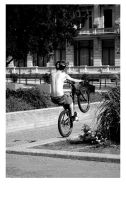 Bicycle Tricks by deadward1555