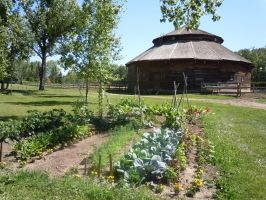 Henderson Garden and Barn by Obiwanlives4ever