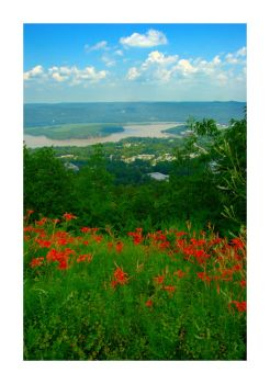 The View from Bear Mountain by jon
