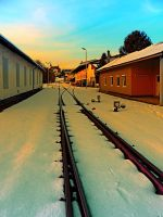 The railway station of Aigen by patrickjobst