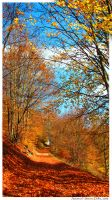 Autumnal by simdolha