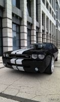 Dodge Challenger - INA 1 by AnalyzerCro