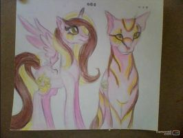 Cat and pony by StarShineTheAlicorn