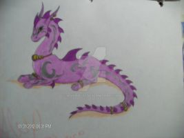 Purple Dragon by Anyriell