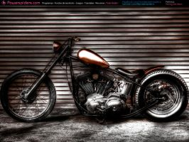 Harley Davidson by powerspiders