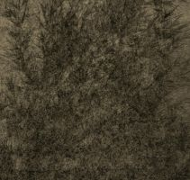Antique Texture 35 by Inthename-Stock