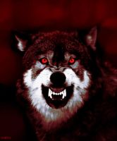 Wolf1 by KF53