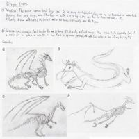 Dragon tutorial part 3-types by Lathrin