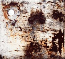 Mosaic of rust II by mercurycode