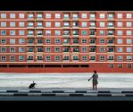 Dogtown: Life On A Leash by MARX77
