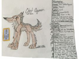 Chet Aguarri ref sheet 2014 by AVE0