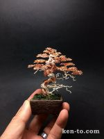 Copper wire bonsai tree with deadwood by Ken To by KenToArt