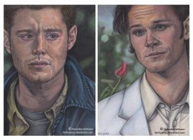 SPN: The End Complete by Verlisaerys
