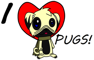 Pug by Jeffery-Cat