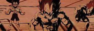 Vegeta banner 1 by Amersss