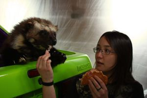 Carthage and I Enjoy a Sammich by Zhon