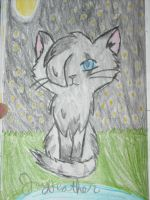 Jayfeather by Kittengirl34