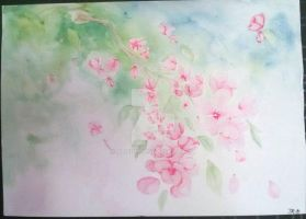 apple blossoms by Triepe