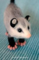 Needle felted Possum by SaniAmaniCrafts