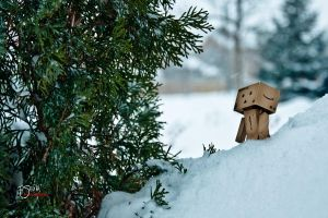 danbo in danger by fernz03