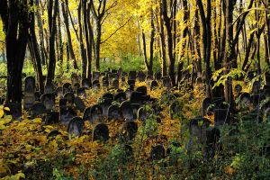 The jewish cemetery by aniaw