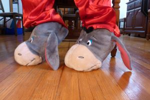 Eeyore slippers, side by ExileLink