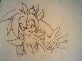Sade the hedgehog by SadexTammy