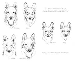 Pack-From-Down-Below headshots by elektroyu