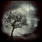 Round About Midnight by intao