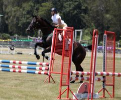 STOCK Showjumping 363 by aussiegal7