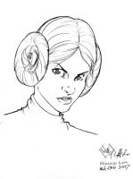 Princess Leia head sketch by ComfortLove