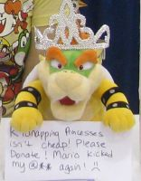 Donate to Bowser by Kishi005