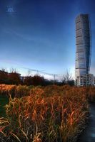 turning.torso by lechistani