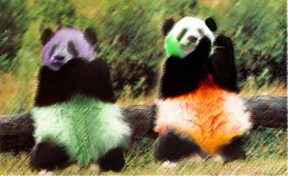 Psychedelic Pandas by shtuff4avacadoes