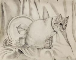 Three Reflective Things . . . and a Cat by xDoglate