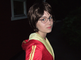 Harry Potter - The boy who lived by Rirukuo
