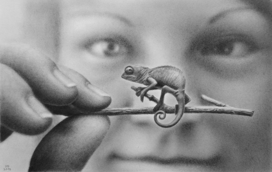 speed drawing girl with chameleon by 8DFineArt