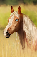 .:: Blonde ::. by Pudingi