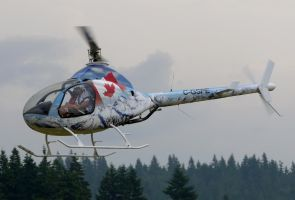 Rotorway EXEC 162F by shelbs2