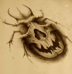 skull bug by AndreySkull