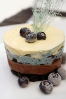 Blueberry Mousse 10 by laurenjacob
