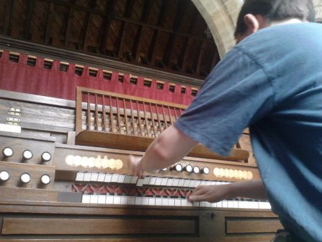 Playing the Organ by 0ZYMANDlAS